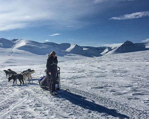 Woman on a dog sled with dogs