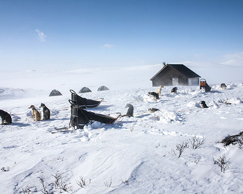 Snowy scene with hut, tents and husky dogs