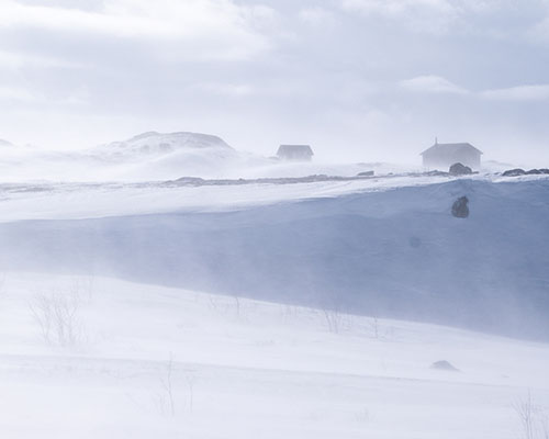 Fine snow blowing over the tundra